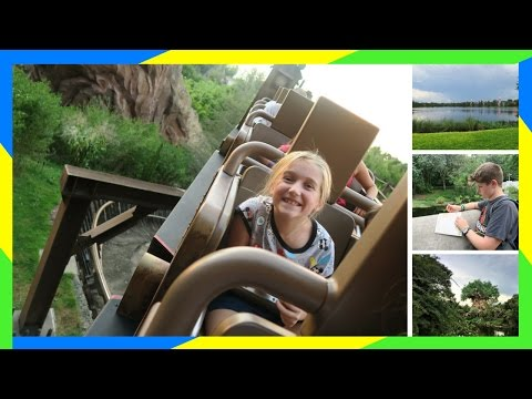 DAY AT DISNEY'S ANIMAL KINGDOM   LION KING & EXPEDITION EVEREST