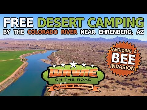 Free Camping Near Ehrenberg AZ and BEES!