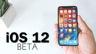 iOS 12 Beta Hands-On!