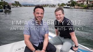 Ant and Dec Funny moments- I'm A Celebrity Get Me Out Of Here week1