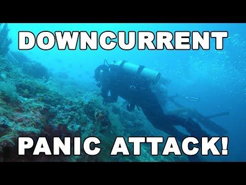 we-got-caught-in-a-downcurrent---panic-(sipadan,-island)-|-diving-malaysia-|-mayentv