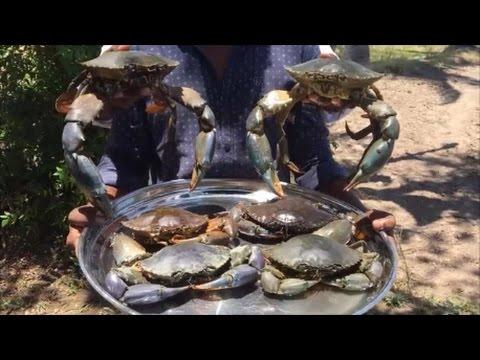 Big Crab Biryani - Cooking Tasty Biryani with Big Mud Crabs in Our Village