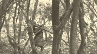 Operación Cedar Falls