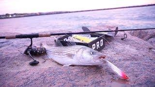 Inlet Striper Fishing -- September Saltwater Montauk MTB Slam