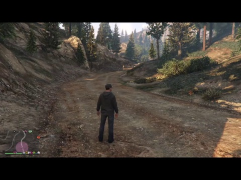 Attempts  : all of them GTAV FAILURE !!!  COME n drop a line
