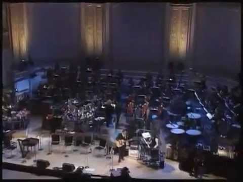 Pete Townshend- Who Are You (Carnegie Hall 1994)