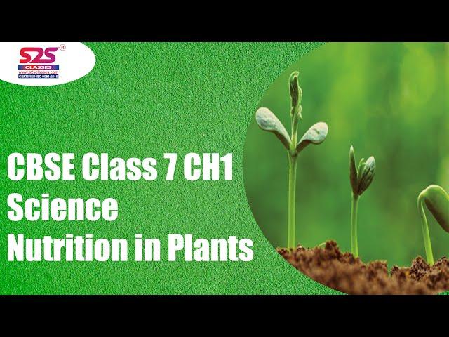 Class 7 CH1 Nutrition in Plants
