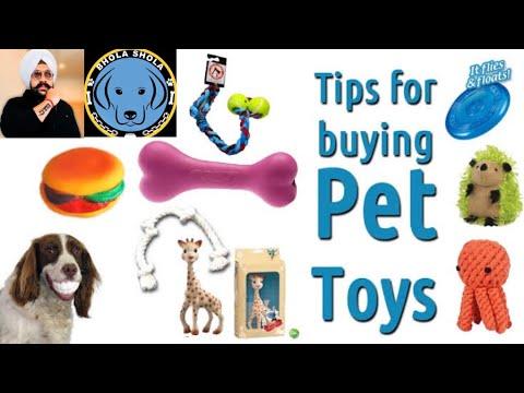 Pet Care - Dog Toys - Bhola Shola