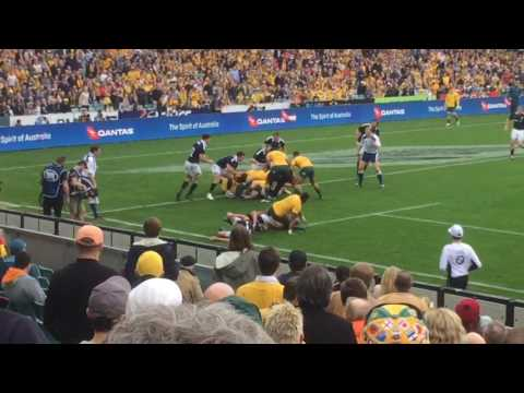 Wallabies vs. Scotland, Sydney, June 17, 2017. Both Israel Folau tries.