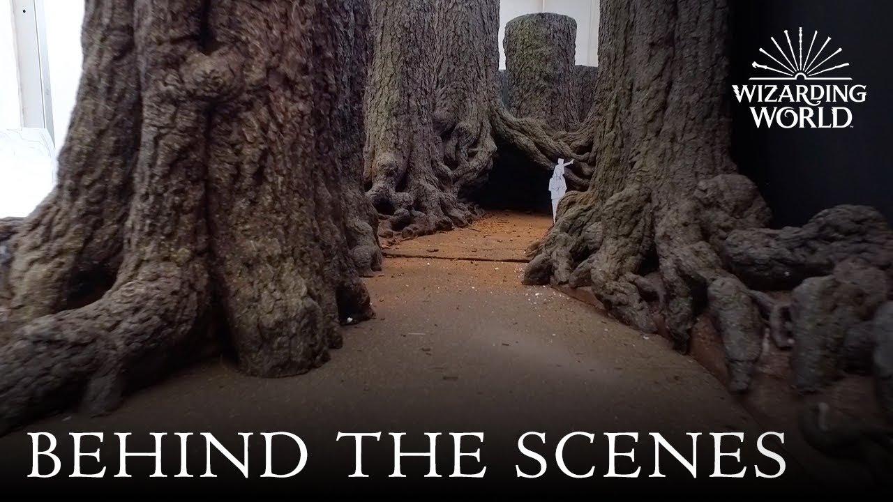 behind the scenes of the forbidden forest at warner bros studio tour london youtube. Black Bedroom Furniture Sets. Home Design Ideas