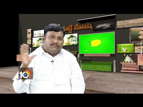 Matti Manishi | How to Success in  Dairy Farms Industry | 10TV