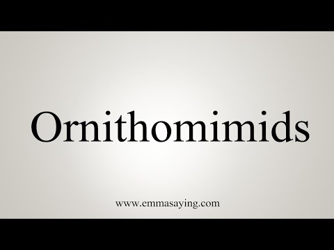 How To Pronounce Ornithomimids