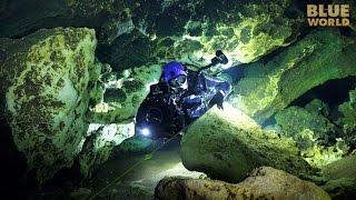 Florida Cave Diving | JONATHAN BIRD'S BLUE WORLD