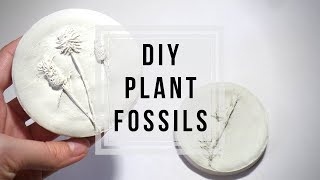 DIY Plant Fossils 🌿 Plaster Flowers | How to Cast Flowers / Plants | Craft Ideas by Fluffy Hedgehog