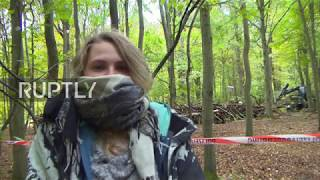 Eviction Of Hambach Forest Activists