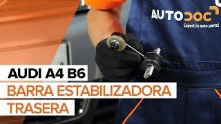 Reemplazar Cilindro de freno de rueda AUDI A4: manual de taller