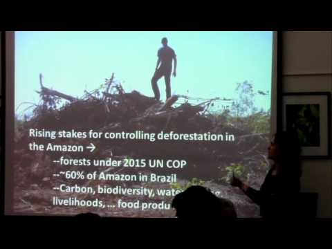 Implications for deforestation-free production in Mato Grosso, Brazil (Part 1)