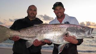 23kg Mulloway | Surf Fishing the Mid-West