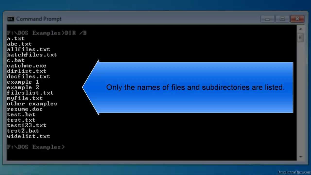 Bare format directory listing with DIR /B Command in MS DOS