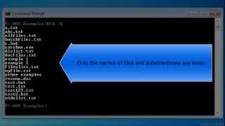 Bare format directory listing with DIR /B Command in MS DOS Video