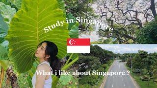 [Du học Singapore] 8 điều mình thích về việc du học Singapore
