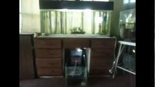 Diy Aquarium Stand, Before And After