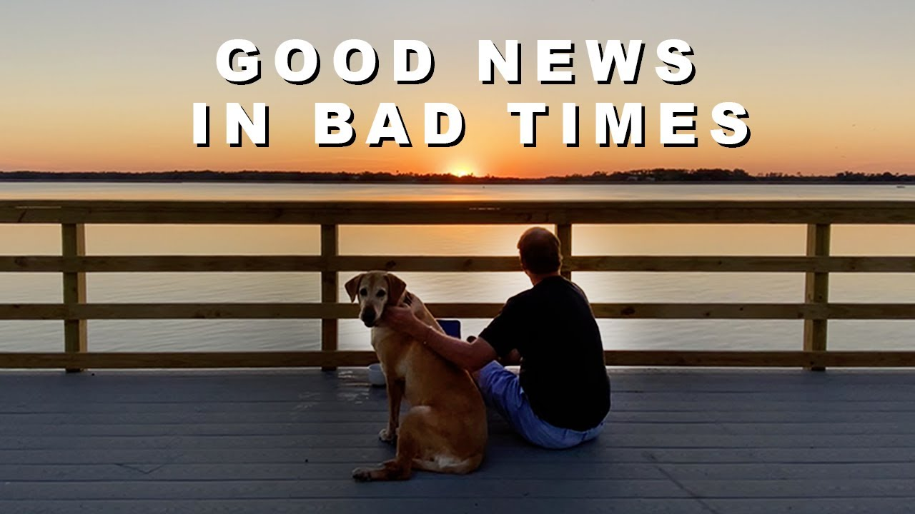 Dog Co. Gets 'Pawsome' News During Worst of Times - Every Dark Cloud has a Silver Lining