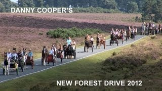 Danny Cooper's New Forest Horse and Pony Drive filmed by Malcolm Dent