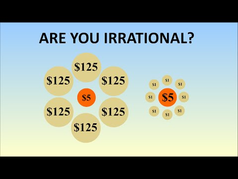 How Logical Are You? The Irrationality Illusion Tricks Most