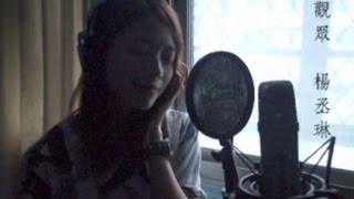 楊丞琳 - 觀眾 (cover by 藍采韻)