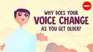 Why does your voice change as you get older?  Shaylin A. Schundler