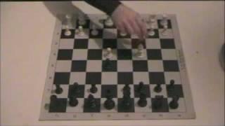 Chess - Scholar