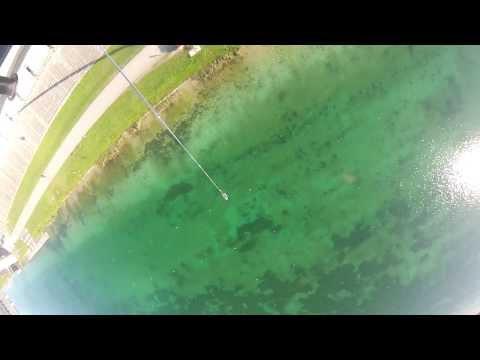Bungee Sprung 50m