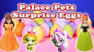SURPRISE EGGS Disney Princess Palace Pets Toys TheEngineeringFamily Surprise Video