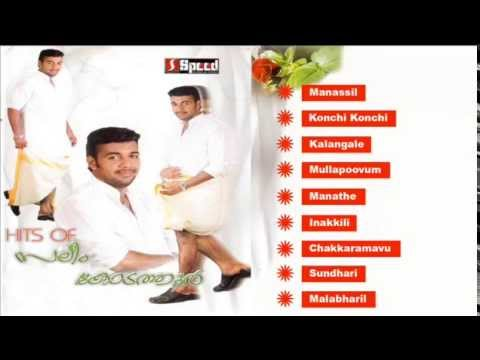 Hits Of Saleem Kodathoor Vol-3 | Romantic Album | Malayalam