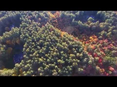 Fall Colors From Carlisle to Acton MA, Drone Footage (Full Flight)