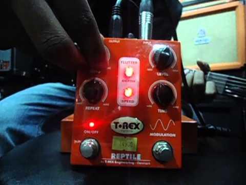 T-Rex Reptile Delay Pedal Demo at Bhargava's Music