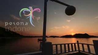 pesona indonesia incredible komodo archipelago