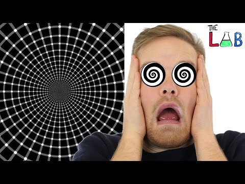 Your Brain On Illusions (The LAB)