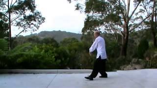 Wu Style Tai Chi 108 Movements Complete