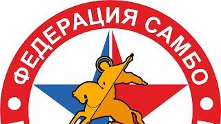 Первенство Московской области по самбо среди юношей 2005-2006 гр