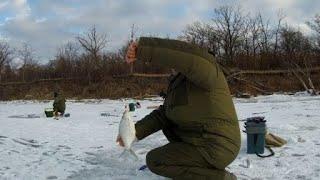 Зимняя рыбалка . Река Дон . Первый лед 2020 - 2021 .