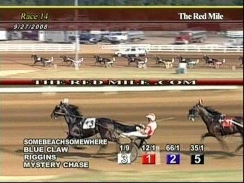 Somebeachsomewhere at The Red Mile 1:46.4