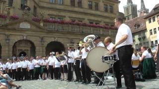 Minnesota Ambassadors of Music - Rothenburg 2014