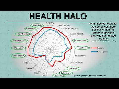 What is the Halo Effect cognitive bias?