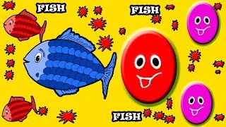 Learn Colors With Animals Transporter for Kids - Colours With Animals Ball Fish Baby Monster