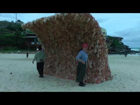 Tamarama coastal walk to Bondi beach