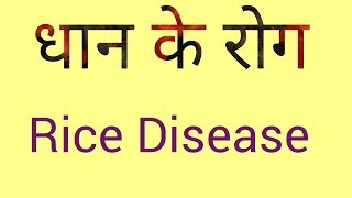 DISEASE of rice