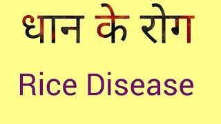 DISEASE of rice