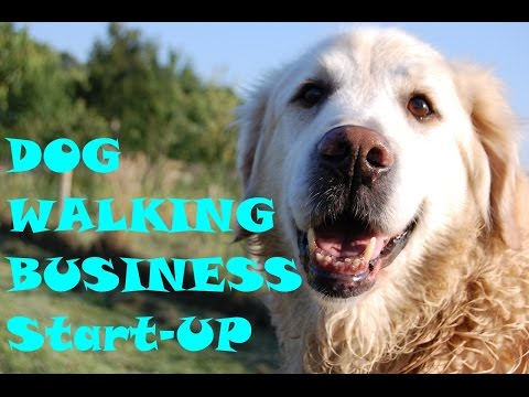 Dog Walking Business - Be you own boss, enjoy your work and